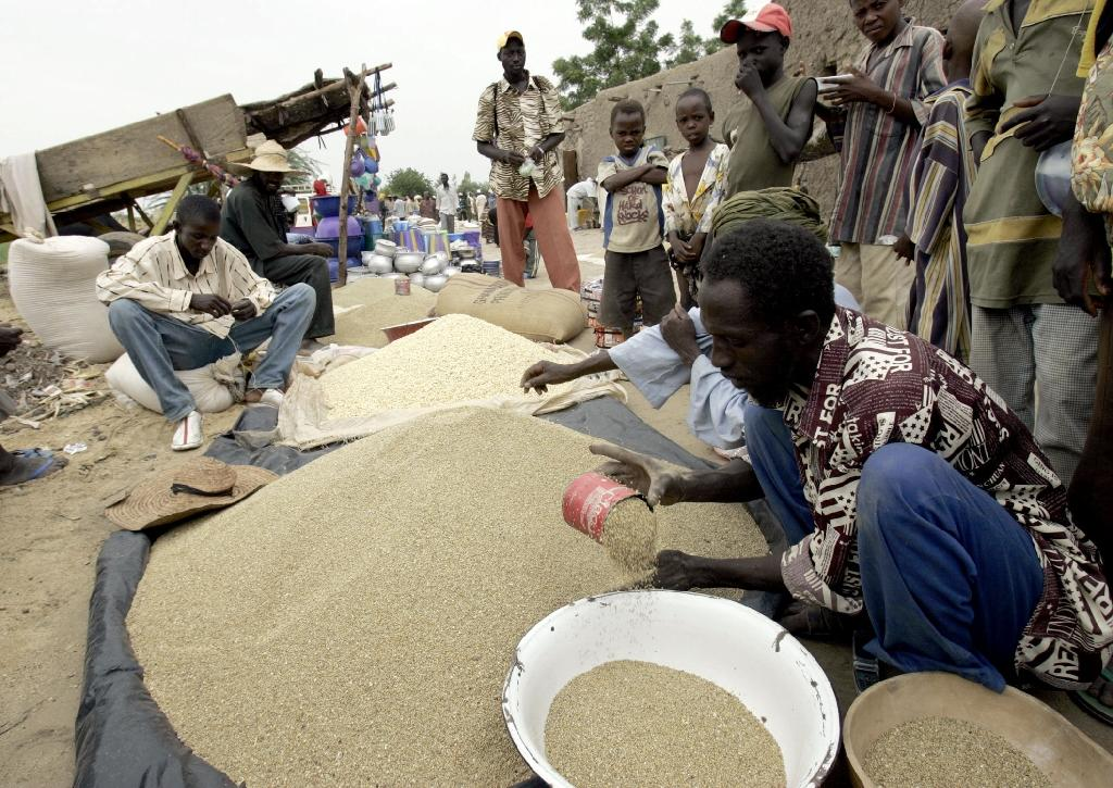 Niger says 2.5 million suffering food insecurity