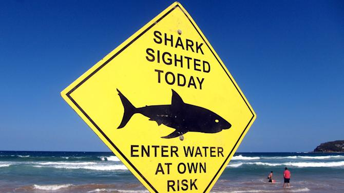 Swimmers walk into the surf next to a sign declaring a shark sighting on Sydney's Manly Beach, Australia