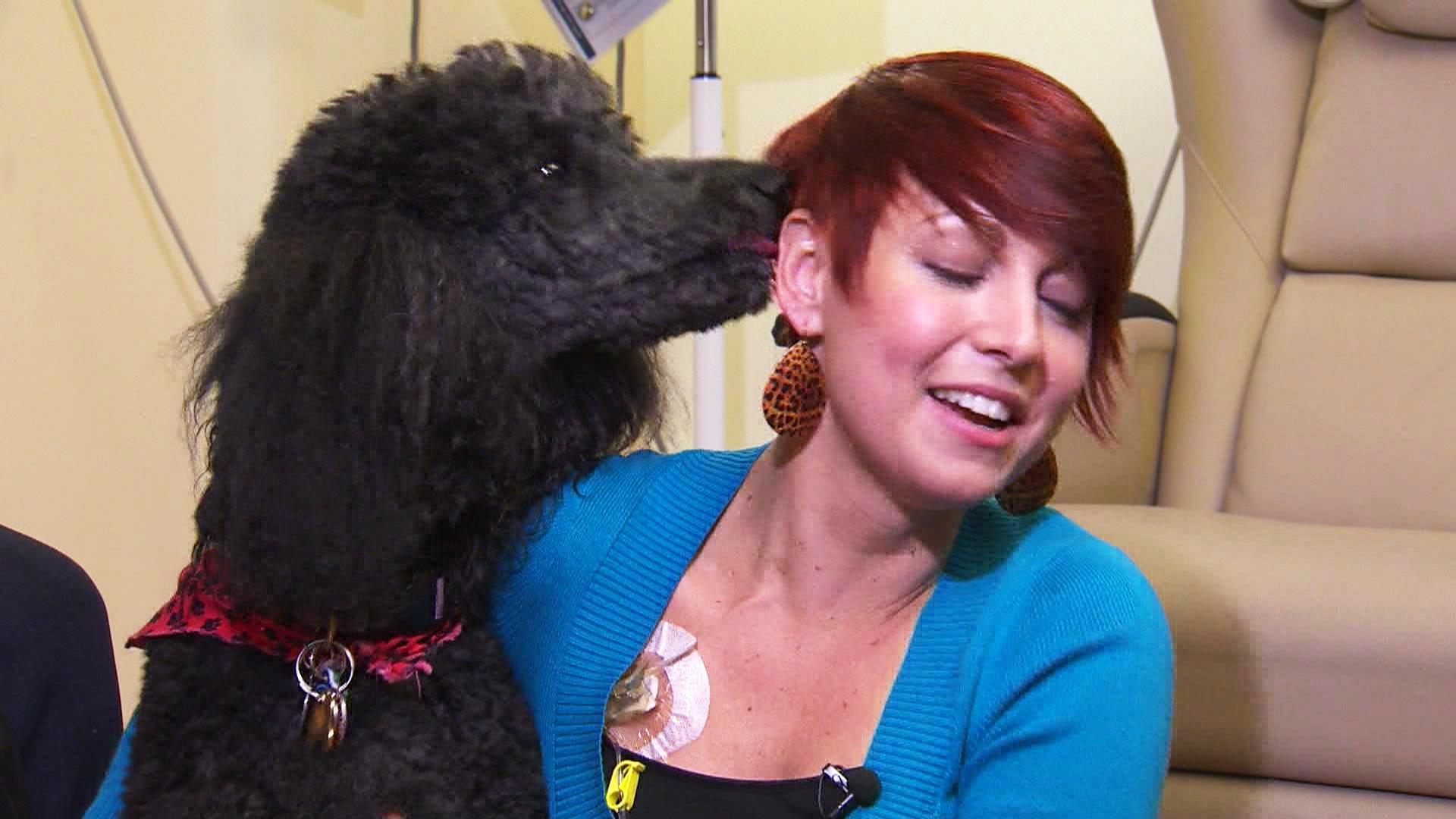 Therapy dogs help cancer patients heal