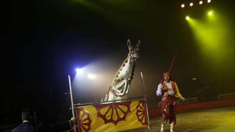 A trainer moves a llama during a show at the Atayde Hermanos Circus in Mexico City