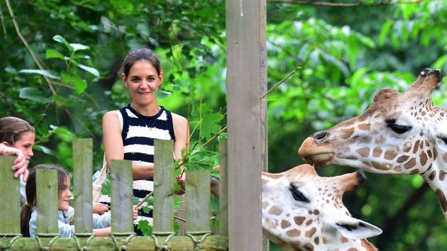 Katie Holmes and Suri Cruise feed giraffes at the Bronx Zoo in New York City on July 28, 2012 -- Getty Premium