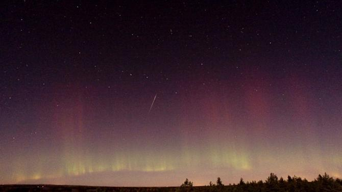 Draconid Meteor Shower: When to Catch It