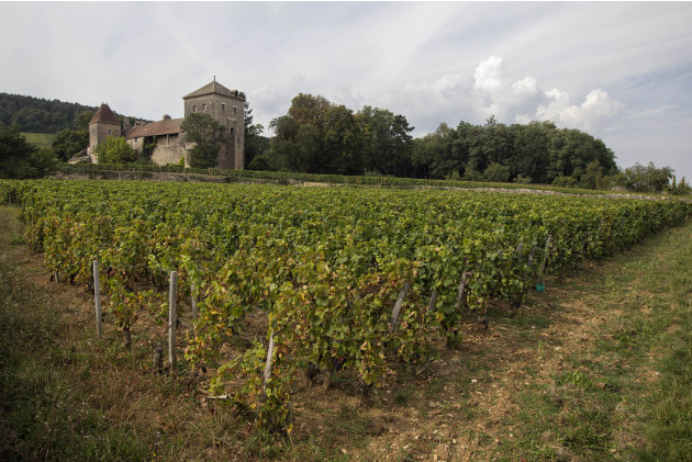 In this Sept. 10, 2012 photo, the Gevrey-Chambertin castle stands in Burgundy, Eastern France. Grape growers in Gevrey-Chambertin say the price Macau casino magnate Louis Ng Chi Sing paid for the chat