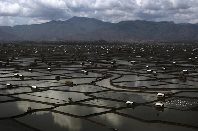 An aerial view of the salt field at Palibelo village is seen, on the outskirts of Bima, on Indonesia's Sumbawa island