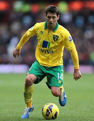 Wes Hoolahan has been called up by the Republic of Ireland