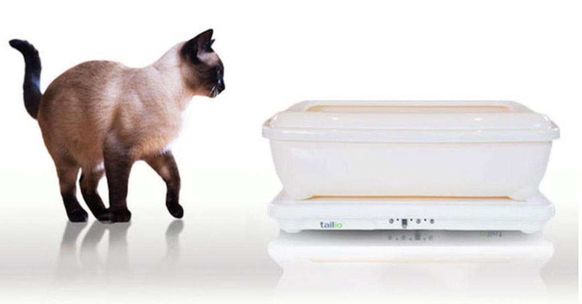 Gadgets that make your cat more awesome
