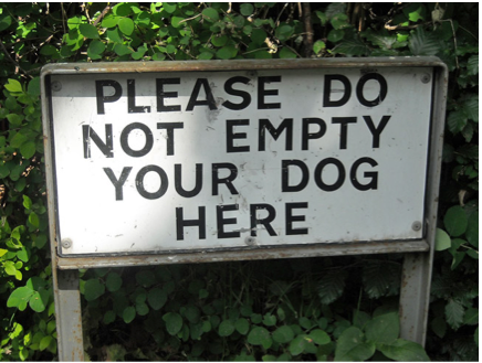 Empty Your Dog