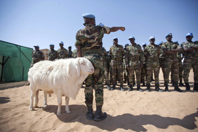 Senegalese troops stand in …