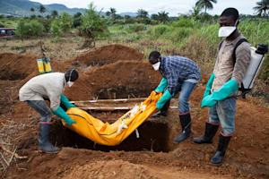 Sierra Leone recorded around half of the cases in an…