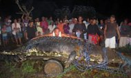 In this photo taken on September 4, villagers examine the 21-foot (6.4 m) saltwater crocodile caught in the town of Bunawan, Agusan del Sur province on the southern Philippine island of Mindanao. Animal rights group PETA has urged the Philippines to free what is thought to be the world's largest crocodile in captivity, even though it allegedly killed two people