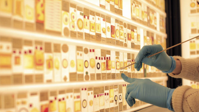 "In this Jan. 30  image made available by University College London Thursday Feb. 7 2013, a curator cleans specimen slides on a wall of the Grant Museum in central London. Jack Ashby, who manages the museum , said Thursday he is trying to give dragonfly nymphs, tortoise mites, and sea spiders the attention they deserve, unveiling a ""Micrarium"" devoted to some of animal kingdom's smallest subjects. ""You go to any natural history museum and it's normally full of big animals, but actually the huge majority of life on Earth is absolutely tiny, and we thought we'd right that wrong,"" he said in a telephone interview. ""We want to give people a chance to see what makes up most of the animal kingdom.""  (AP Photo/ UCL, Grant Museum of Zoology/Robert Eagle)"