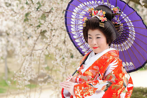 Japanese Bride in Kimono with Cherry Blossoms