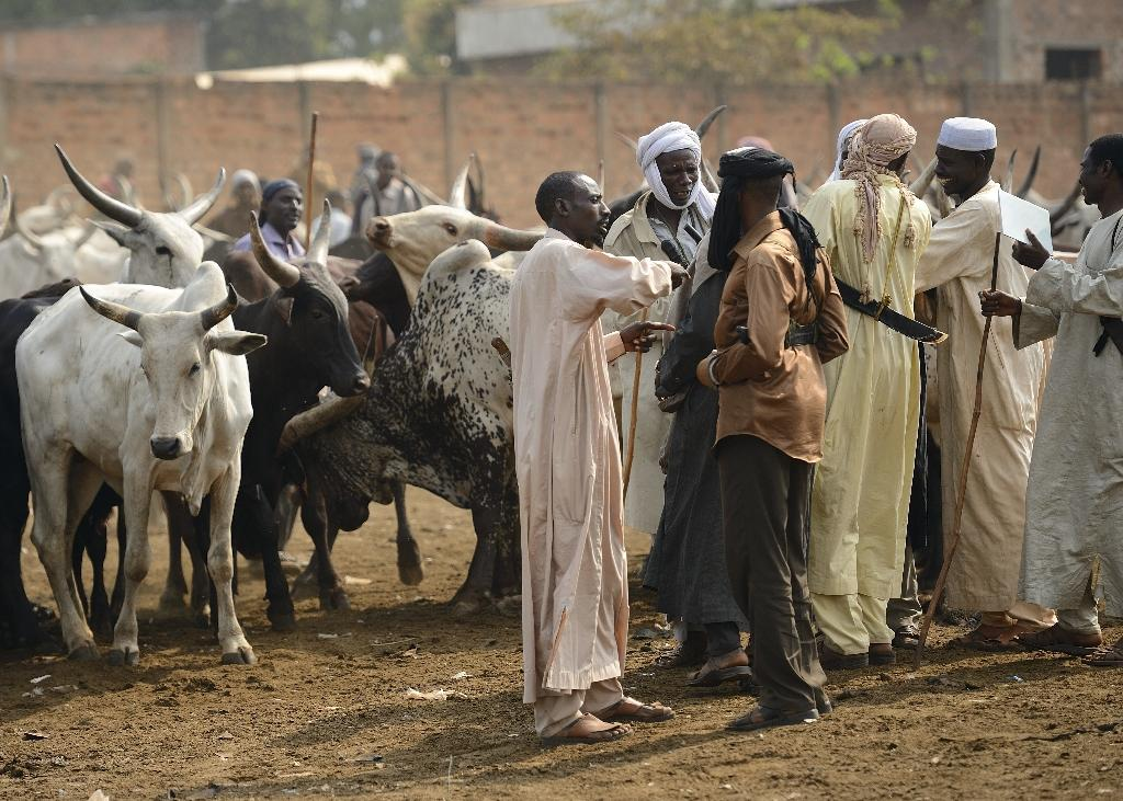 'Cattle war' rages amid C. African sectarian violence