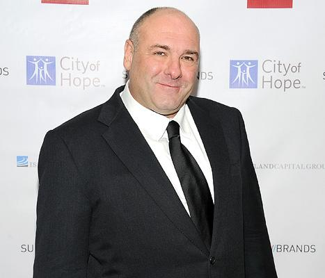 James Gandolfini's Will: Leaves $70 Million Estate to His Kids, Wife