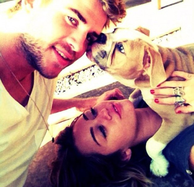Celebrity photos: Miley Cyrus regularly tweets photos of her pets, but its unusual to see a snap of her with new fianc Liam Hemsworth. However, this week she posted a picture of the pair with their 