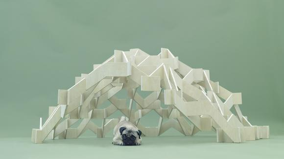 Architecture for Dogs