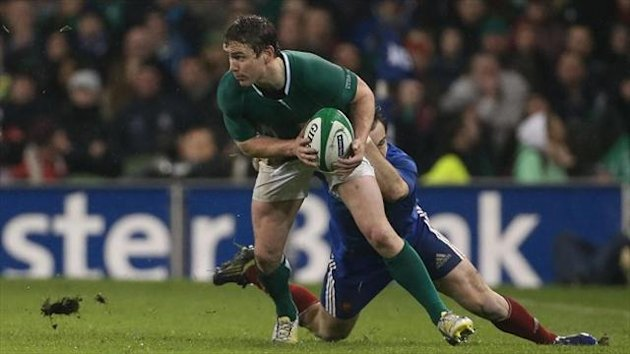 Eoin Reddan, pictured, has hailed new head coach Joe Schmidt's quick adaptation to management at international level