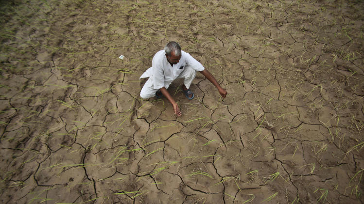 An Indian farmer shows a dry, cracked paddy field in Ranbir Singh Pura 34 kilometers (21 miles) from Jammu, India, Friday, Aug. 3, 2012. India's Meteorological Department says it expects the country to get at least 10 percent less rain this June-to-September monsoon season. The shortfall also is expected to swell electricity demand in a power-starved nation as farmers turn to irrigation pumps to keep their fields watered. (AP Photo/Channi Anand)