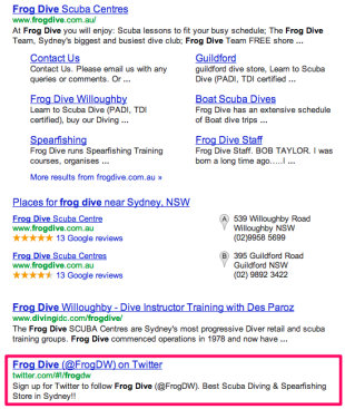 Why Its Time for Tour or Activity Operators to Use Social Media image frog dive scuba twitter serp