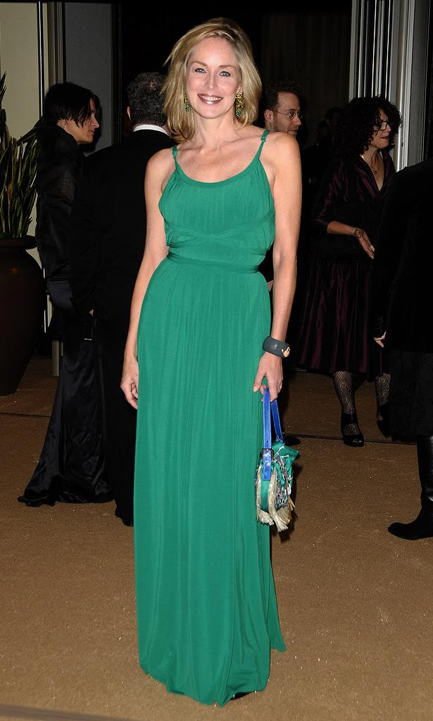2nd Annual AMPAS Governors Awards 2010 Sharon Stone