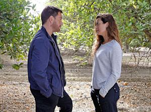 RATINGS RAT RACE: ABC Tuesday Lineup Tumbles In Week 2, 'NCIS' Tops 'S.H.I.E.L.D.'