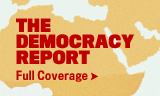 The Democracy Report