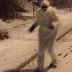 A Yeti Was Running Around Boston During The Blizzard
