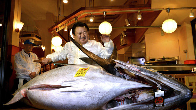 President of sushi restaurant chain Sushi-Zanmai, Kiyoshi Kimura, displays a 222kg bluefin tuna at his main restaurant near Tokyo's Tsukiji fish market on January 5, 2013. The bluefin tuna was traded at 155.4 million yen (1.77 million USD) at the wholesale market, smashing a previous record. AFP PHOTO / Yoshikazu TSUNO