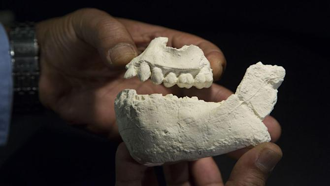 Fossils of Previously Unknown Early Human Species Found