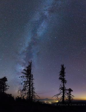 Stargazer Snaps Stunning Milky Way Photo of Mount Rainier (Image)