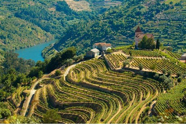 Douro Portugal wine regio …