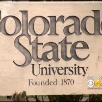 Police Search For Sex Assault Suspect After Attack Near CSU Campus