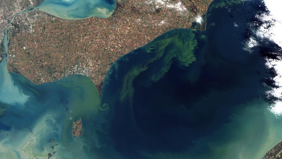 Why Lake Erie is Under Attack from Algae Blooms