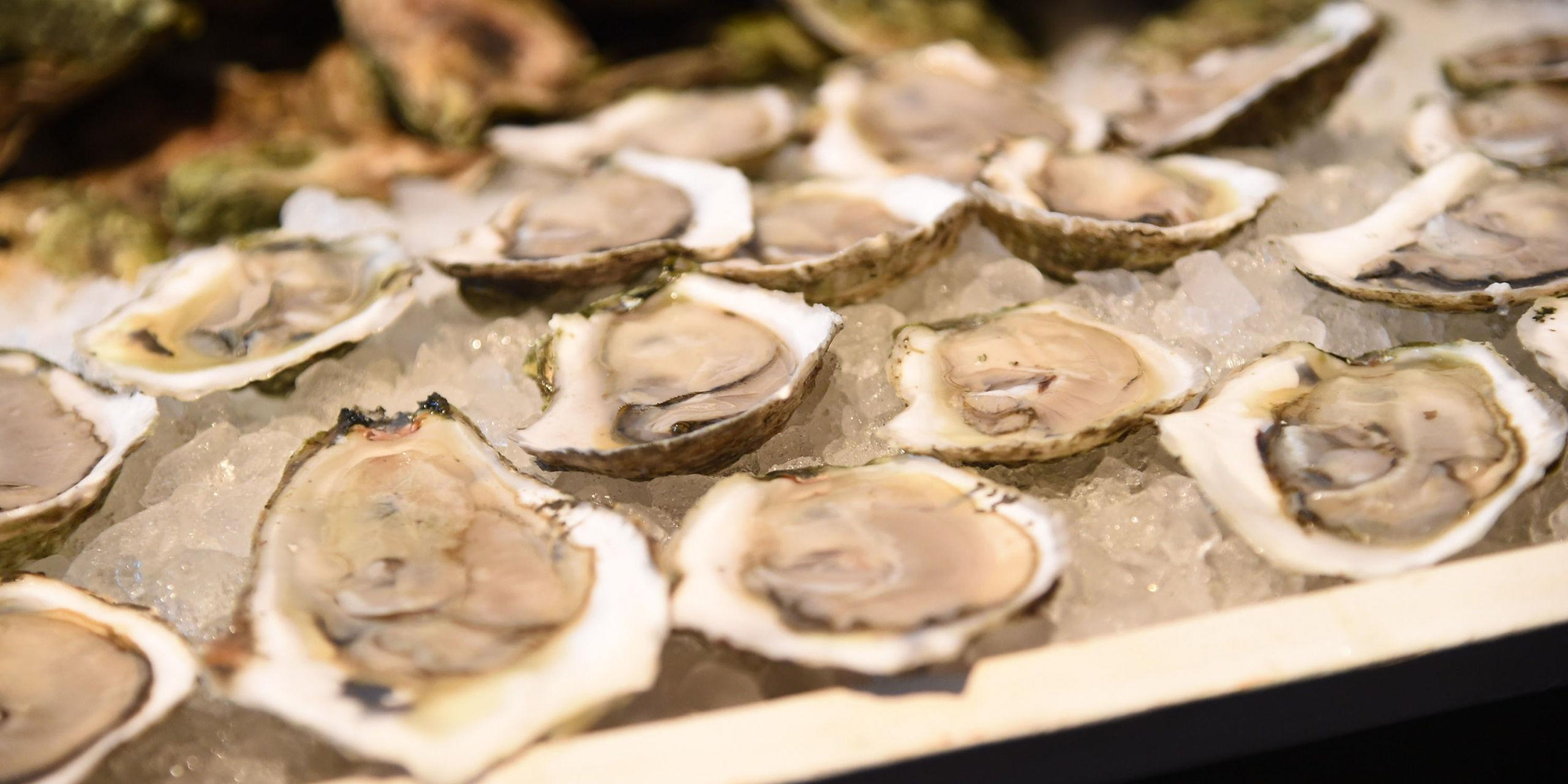 Is the Southeastern U.S. the Hottest New Region for Oysters?