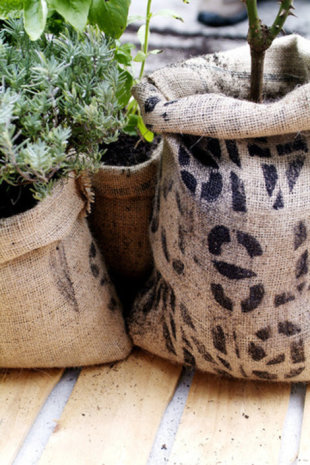Burlap Coffee Bag Planters