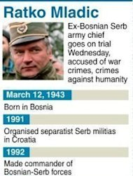 The war crimes trial of former Bosnian Serb army chief Ratko Mladic has been abruptly halted, just a day after it opened, because of prosecution &quot;irregularities&quot; in the high-profile case