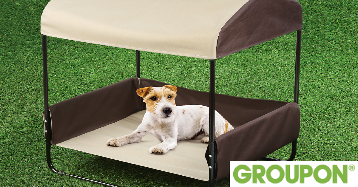 50% Off on Portable Pet Bed with Canopy