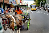 Need a lift?: The carriage driver ready to take the tourists to explore malioboro street. (