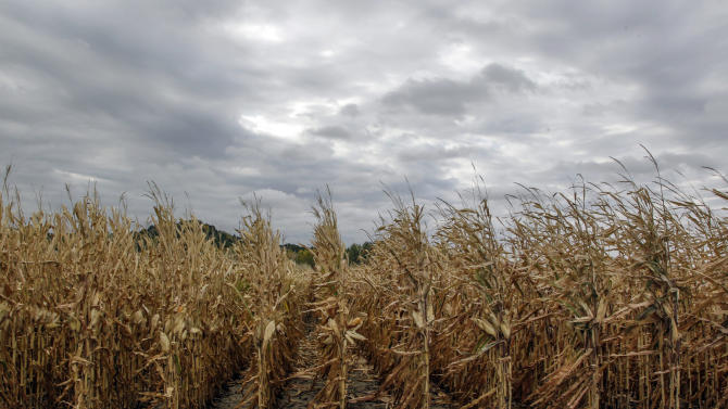 Corn shortage idles 20 ethanol plants nationwide