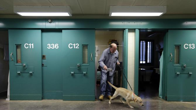 In this Nov. 26, 2012 photo, inmate John Barba walks out of his cell with Dill, a veteran assistance dog in training, at Western Correctional Institution in Cresaptown, Md. Dill is one of three dogs assigned since September to inmates at the maximum-security prison for basic training as service dogs for disabled military veterans. The inmates, who are also veterans, are among the state's first prisoners to join a national trend of training service dogs in correctional institutions. Professional trainers say prison-raised dogs tend to graduate sooner and at higher rates than those raised traditionally in foster homes because puppies respond well to the consistency and rigid schedules of prison life. (AP Photo/Patrick Semansky)