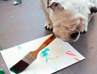 Piper the painting dog