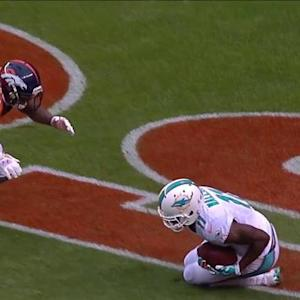 Miami Dolphins wide receiver Mike Wallace 10-yard TD catch