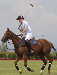 Britain's Prince Harry plays a charity polo match in Campinas, Brazil, Sunday March 11, 2012. Prince Harry is in Brazil at the request of the British government on a trip to promote ties and emphasize the transition from the upcoming 2012 London Games to the 2016 Olympics in Rio de Janeiro. (AP Photo/Andre Penner)
