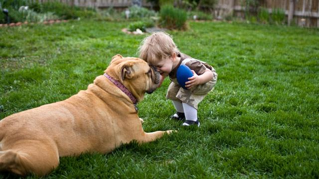 Kids' Best Friend?  Dogs, Cats May Lower Risk for Respiratory Illnesses