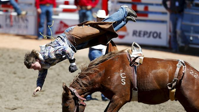 "McCallum gets bucked off the horse ""Yucatan Margie"" in the novice bareback event during the Calgary Stampede rodeo in Calgary"