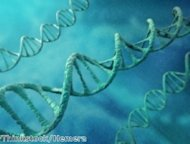 Govt starts a new DNA database