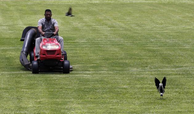 A man works on the field of Ponte Preta soccer club's training centre, where Portugal's national soccer team will be training during the 2014 World Cup, in Campinas