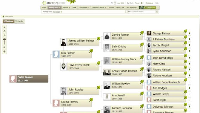 This undated image provided by Ancestry.com shows a family tree made on the genealogy website Ancestry.com which agreed to be acquired by a group led by European private equity firm Permira Funds in a cash deal valued at about $1.6 billion on Monday, Oct . 22, 2012. The offered price of $32 per share is a nearly 10 percent premium over Friday's closing price of $29.18. Ancenstry.com's shares jumped 7.8 percent, or $2.28, to $31.46 in Monday afternoon trading.  (AP Photo/Ancestry.com)
