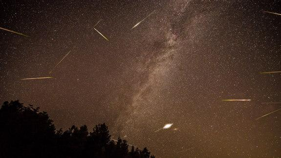The Meteoric Rise of Life?