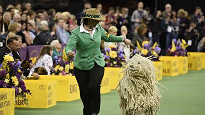 The Strict Style Rules of the Westminster Dog Show